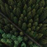 Drohnenaufnahme Odenwald von oben
