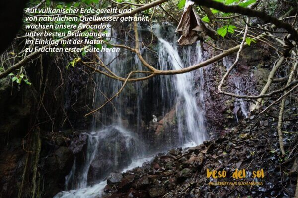 Wasserversorgung AVOLEO scaled 1